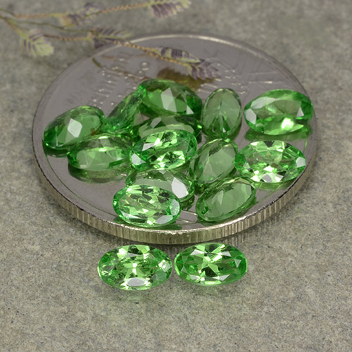 0.2ct Oval Facet Lively Green Tsavorite Garnet Gem (ID: 482355)