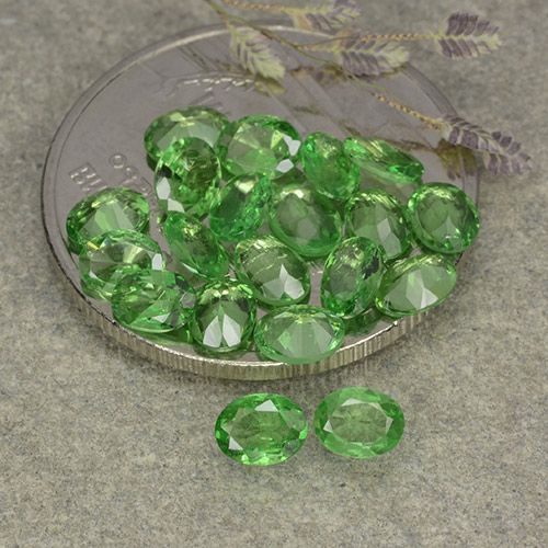 0.2ct Oval Facet Medium Green Tsavorite Garnet Gem (ID: 482357)