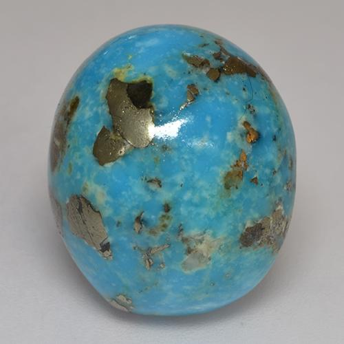 Dark Greenish Blue Turquoise gemme - 20ct Ovale Cabochon (ID: 526594)