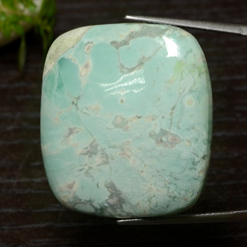 50.8ct Cushion Cabochon Green Variscite Gem (ID: 471118)