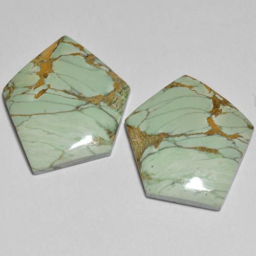 Multicolor Green Variscite Gem - 8.6ct Fancy Cabochon (ID: 512387)