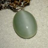 thumb image of 6.1ct Oval Cabochon Green Actinolite Cat's Eye (ID: 485743)