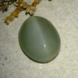 6.77 ct Oval Cabochon Medium-Light Green Actinolite Cat's Eye Gem 14.59 mm x 11.7 mm (Photo B)