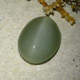 6.77 ct Oval Cabochon Medium-Light Green Actinolite Cat's Eye Gem 14.59 mm x 11.7 mm (Photo C)
