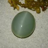 thumb image of 6.2ct Oval Cabochon Green Actinolite Cat's Eye (ID: 485885)