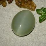 5.92 ct Ovale cabochon Warm Green Occhio di gatto actinolite Gem 13.87 mm x 11.3 mm (Photo B)