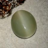 5.79 ct Oval Cabochon Army Green Actinolite Cat's Eye Gem 13.25 mm x 11.2 mm (Photo C)