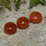thumb image of 0.4ct Round Cabochon Reddish Orange Agate (ID: 471558)