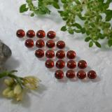 0.21 ct Round Cabochon Deep Red Almandine Garnet Gem 3.14 mm  (Photo B)