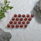 0.20 ct Round Cabochon Red Almandine Garnet Gem 3.11 mm  (Photo C)