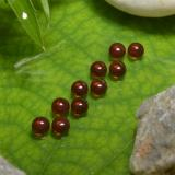 thumb image of 2.1ct Round Cabochon Red Almandine Garnet (ID: 467886)