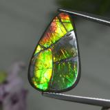 thumb image of 8.4ct Fancy Cabochon Multicolor Ammolite (ID: 284796)