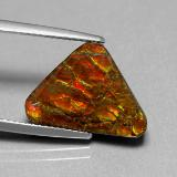 Ammolite from The Source