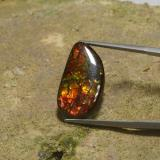 thumb image of 10.7ct Fancy Cabochon Multicolor Ammolite (ID: 295275)