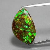 thumb image of 11.6ct Fancy Cabochon Multicolor Ammolite (ID: 377513)