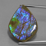 thumb image of 18.1ct Fancy Cabochon Multicolor Ammolite (ID: 451536)