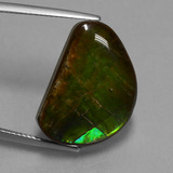 thumb image of 15.9ct Fancy Cabochon Multicolor Ammolite (ID: 451551)