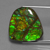 thumb image of 16.1ct Fancy Cabochon Multicolor Ammolite (ID: 452646)
