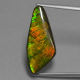thumb image of 15.1ct Fancy Cabochon Multicolor Ammolite (ID: 452735)