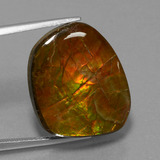 thumb image of 16.1ct Fancy Cabochon Multicolor Ammolite (ID: 452854)