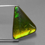 thumb image of 11.3ct Trillion Cabochon Multicolor Ammolite (ID: 453567)