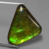 thumb image of 21.8ct Trillion Cabochon Multicolor Ammolite (ID: 453568)