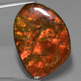 thumb image of 25.3ct Fancy Cabochon Multicolor Ammolite (ID: 453605)