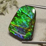thumb image of 23.2ct Fancy Cabochon Multicolor Ammolite (ID: 494367)