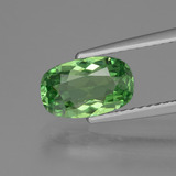 thumb image of 1.4ct Cushion-Cut Green Apatite (ID: 424043)