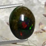 thumb image of 4.6ct Oval Cabochon Multicolor Black Opal (ID: 471855)