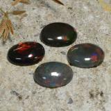 0.81 ct Oval Cabochon Multicolor Black Opal Gem 8.82 mm x 7 mm (Photo B)
