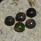 thumb image of 1ct Round Cabochon Multicolor Black Opal (ID: 473748)