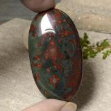 thumb image of 56.4ct Oval Cabochon Multicolor Bloodstone (ID: 485165)