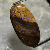 thumb image of 17.3ct Oval Cabochon Multicolor Boulder Opal (ID: 302921)