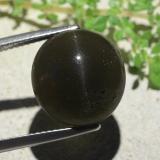 thumb image of 14.1ct Oval Cabochon Deep Green Cat's Eye Scapolite (ID: 484111)