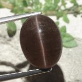 thumb image of 6.6ct Oval Cabochon Medium Brown Cat's Eye Scapolite (ID: 484166)