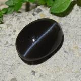 2.45 ct Oval Cabochon Black Cat's Eye Scapolite Gem 9.81 mm x 6.9 mm (Photo B)