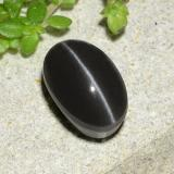 thumb image of 2ct Oval Cabochon Black Cat's Eye Scapolite (ID: 485020)