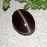 thumb image of 1.5ct Oval Cabochon Black Cat's Eye Scapolite (ID: 485072)