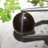 thumb image of 2.3ct Round Cabochon Black Cat's Eye Scapolite (ID: 497307)