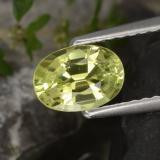 thumb image of 1ct Oval Facet Golden Green Chrysoberyl (ID: 367068)