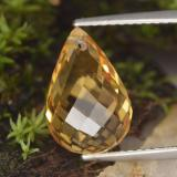 thumb image of 4.7ct Briolette with Hole Yellow Golden Citrine (ID: 288963)