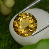 thumb image of 4.4ct Round Facet Yellow Golden Citrine (ID: 329931)