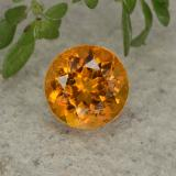 thumb image of 0.8ct Round Facet Yellow Orange Clinohumite (ID: 494991)