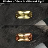 thumb image of 0.7ct Octagon / Scissor Cut Greenish Brown To Red Pink Color-Change Garnet (ID: 238081)