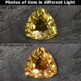 thumb image of 0.6ct Trillion Facet Golden Brown to Orange Color-Change Garnet (ID: 253505)