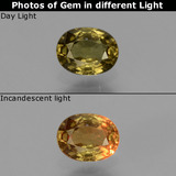 thumb image of 0.6ct Forma ovalada Amarillo dorado Granate con Cambio de Color (ID: 429001)