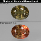 thumb image of 1.4ct Oval Facet Greenish Brown To Red Pink Color-Change Garnet (ID: 429332)