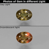 thumb image of 0.5ct Oval Facet Greenish Brown To Red Pink Color-Change Garnet (ID: 429335)