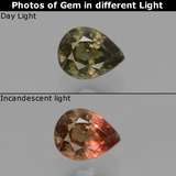 thumb image of 0.5ct Pear Facet Greenish Brown To Red Pink Color-Change Garnet (ID: 429587)
